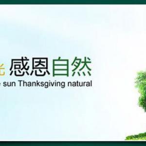 沭阳县润土绿化苗木场
