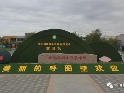 第九届新疆苗木花卉博览会开幕式现场直播入口